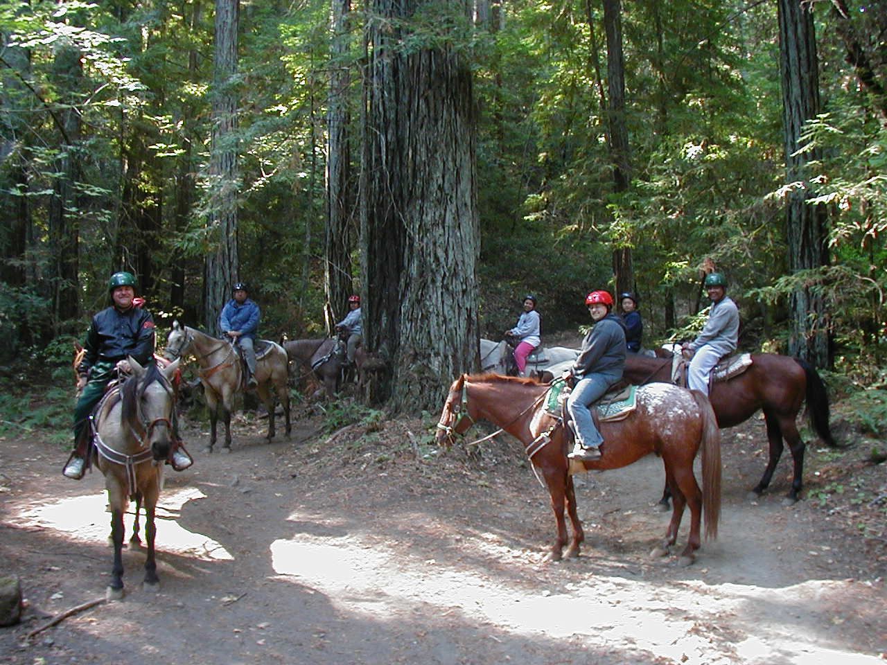Horseback Riding Sugarloaf Ridge  2002.JPG